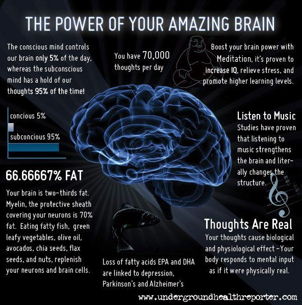 The Power Of Your Amazing Brain Infographic